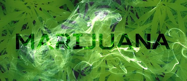 "A backdrop of marijuana leaves, overlayed with the word ""marijuana"" and a curl of smoke."