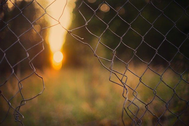 A picture of a fence cut open with a sunrise in the background, symbolizing a path to freedom and away from incarceration.