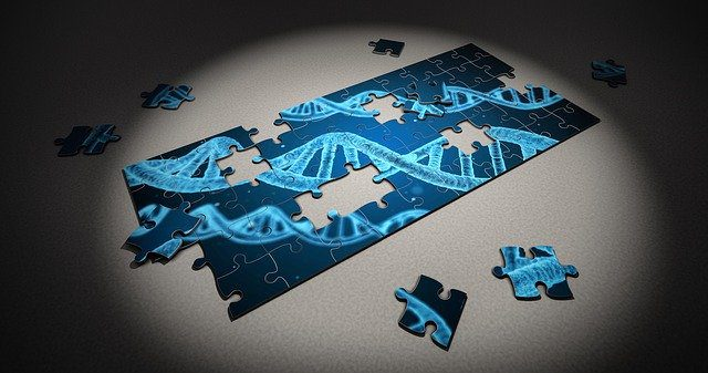 A puzzle being done, showing a DNA strand. The puzzle is incomplete, with several pieces missing.