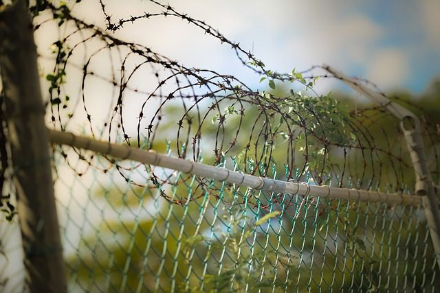 A close up image of barbed wire on top of a fence