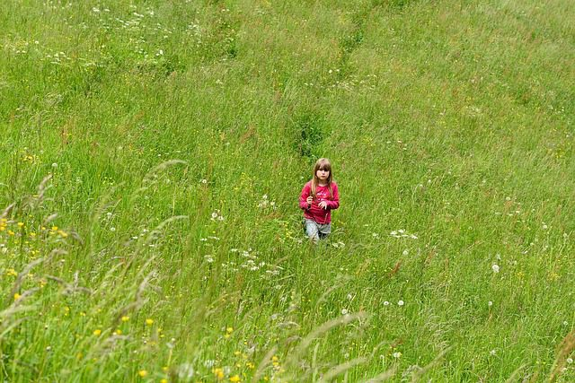 A little girl walking alone through a field of grass and flowers.