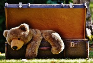 Stuffed animal in suitcase