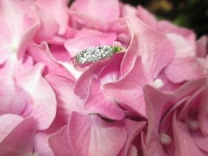 Picture of engagement ring sitting on flowers