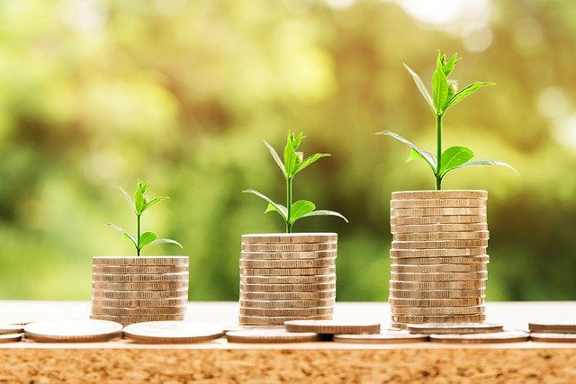 Three stacks of coins, each one taller than the next, with a plant growing out of the top. This shows that planning ahead for your child's future support is important.